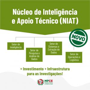 organograma-NIAT